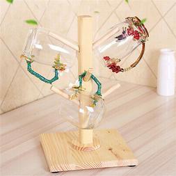 6 Hooks Wood Mug Rack Holder Tree Coffee Cup Storage Stand K