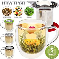 Teabloom Double Wall Glass Mug with Infuser & Lid +2 Gourmet