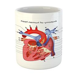 Educational Mug by Ambesonne, Medical Structure of the Heart