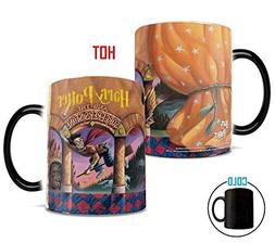 Morphing Mugs Harry Potter Book Cover Heat Reveal Ceramic Co