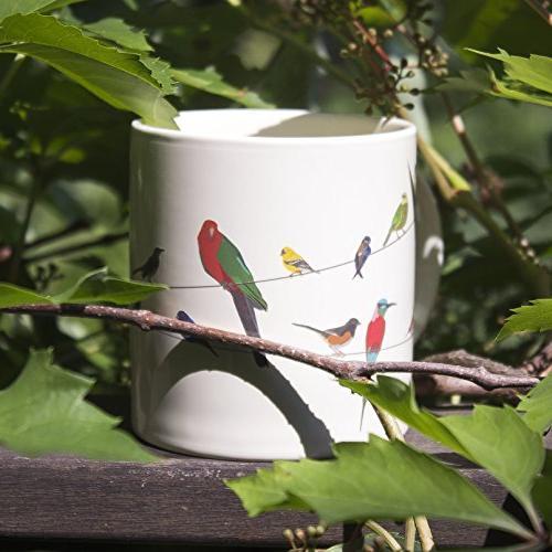 Birds a Heat Add Coffee - Comes in a Fun