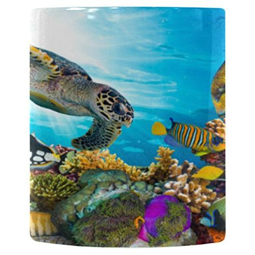 colorful fish sea turtle ocean